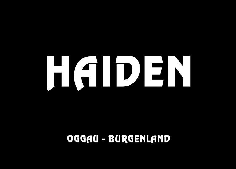 media/image/logo_hannes-haiden_oggau_g_was-768x551.jpg