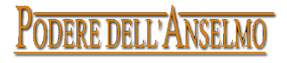 media/image/Logo-Anselmo-Schrift-Kopie.png