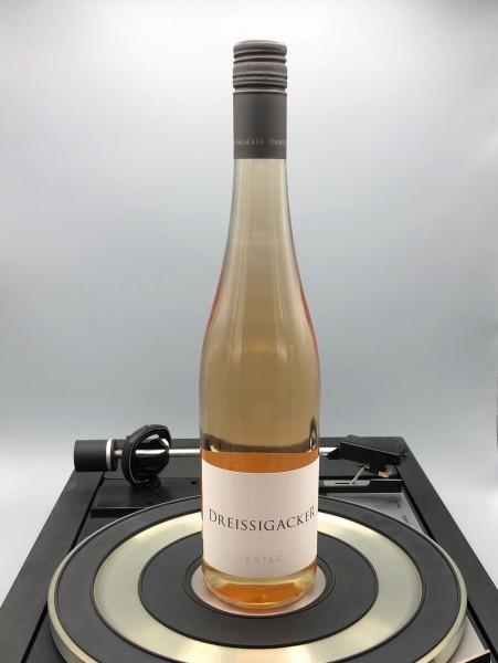 PNT & C. Rose 2019 - Bio | Dreissigacker, Rheinhessen, Deutschland