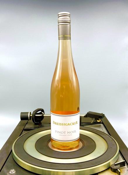 Pinot Noir Rose 2018 - Bio | Dreissigacker, Rheinhessen, Deutschland